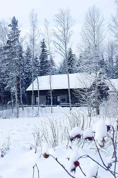 Decoración de casas: interiores en estilo moderno nórdico 17