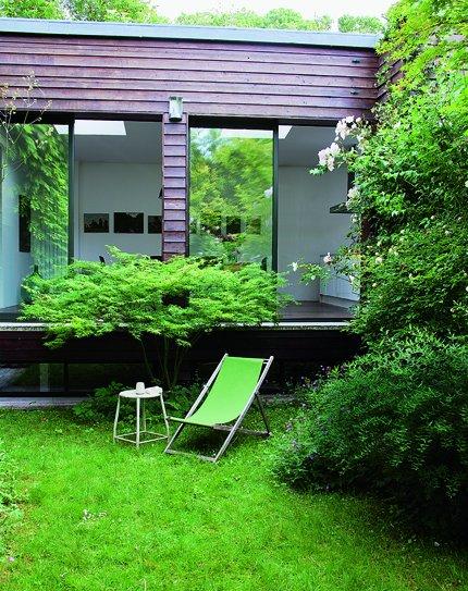 Vista del jardín con plantas de bambú y rosales