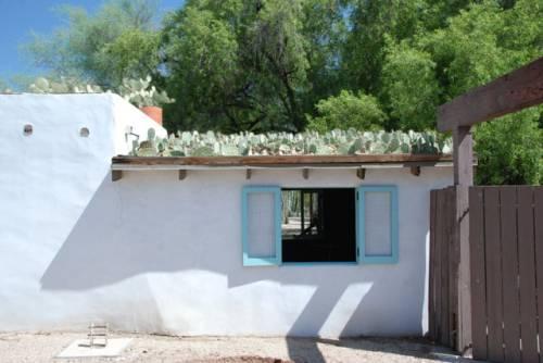 Techo verde con cactus 1