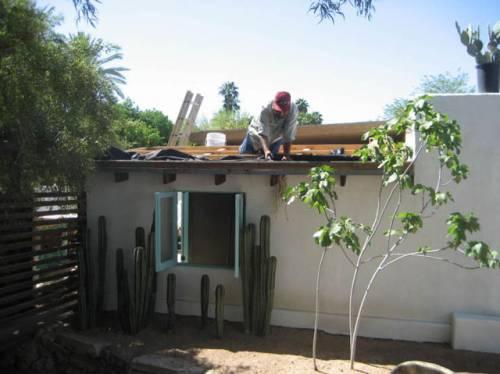 Techo verde con cactus 2