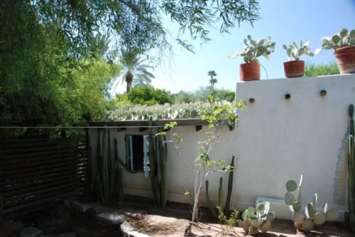 Techo verde con cactus 3