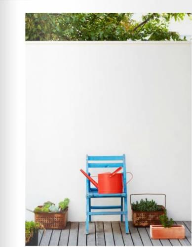 Colores para un jardín moderno