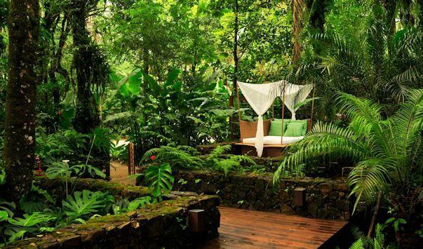 Jardín tropical, frondoso y con mucho verde 2