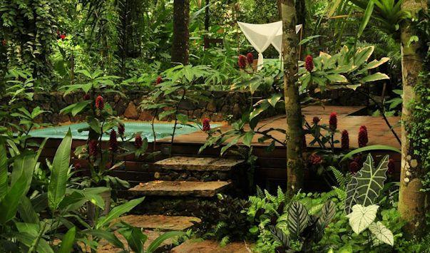 Jardín moderno y tropical con pileta pequeña