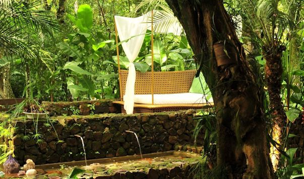 Jardín tropical, frondoso y con mucho verde