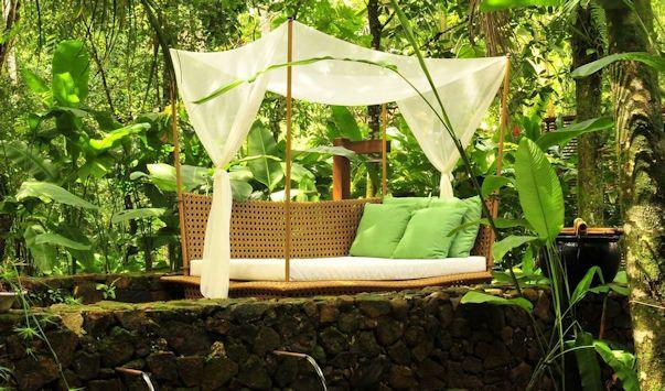 Diseño de un jardín moderno y tropical