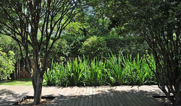 Jardin moderno y tropical deck de madera