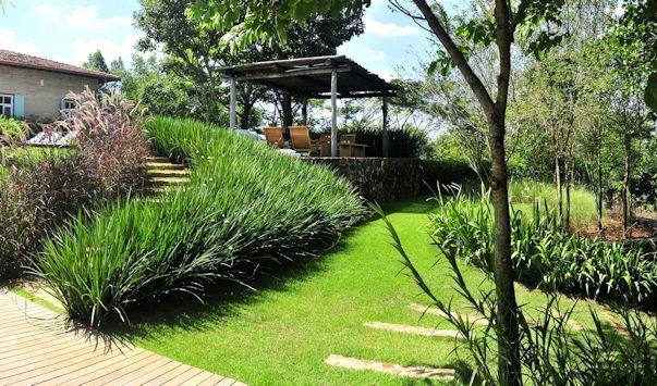 Jardin moderno y tropical