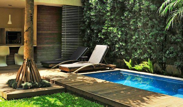Jardines pequeños con pileta y vegetación tropical