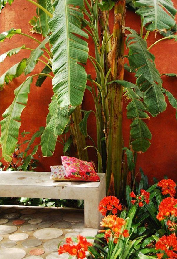 Jardin colorido plantas tropicales