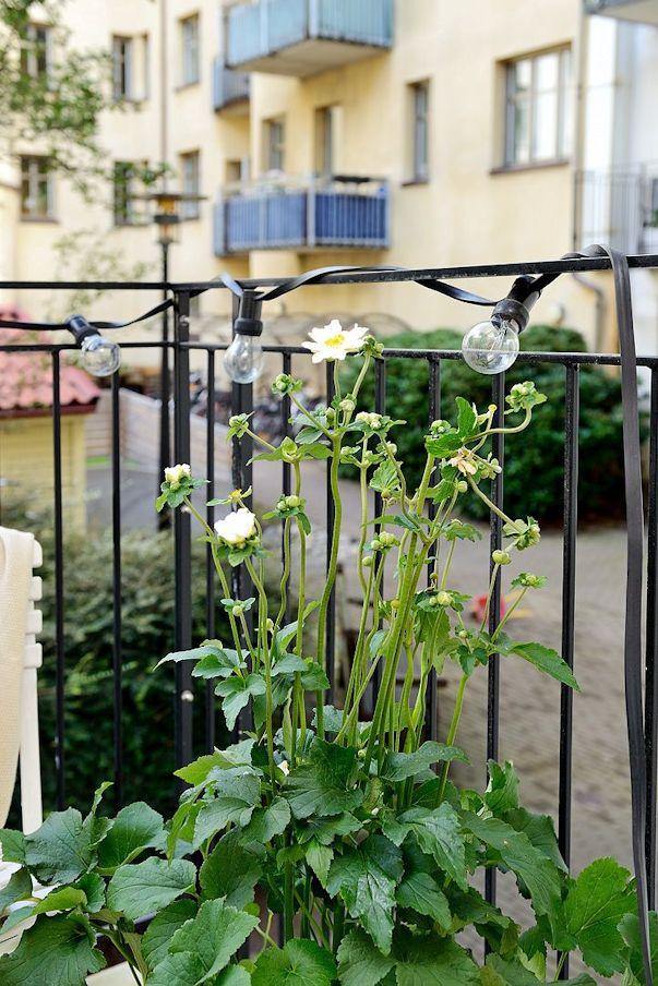 Balcon del monoambiente 2