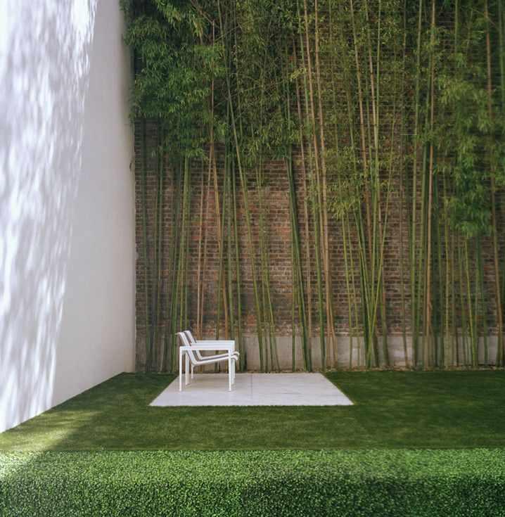 Galeria De Casas Exteriores: Jardín Minimalista En La Ciudad