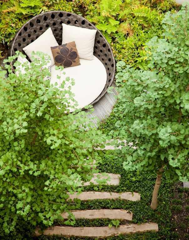 Jardines pequeños y modernos: un bosque en pocos metros 2