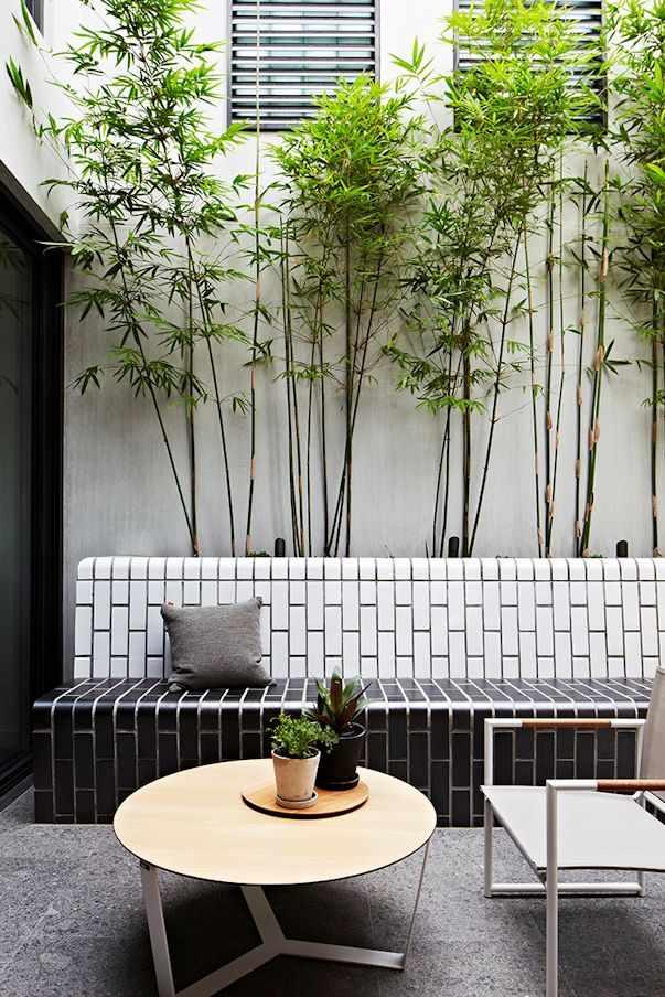 Patio interno pequeño y de diseño moderno