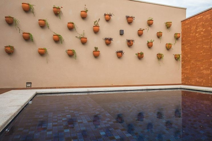Una pared repleta de macetas con plantas de bajo mantenimiento decoran el sector de la pileta.