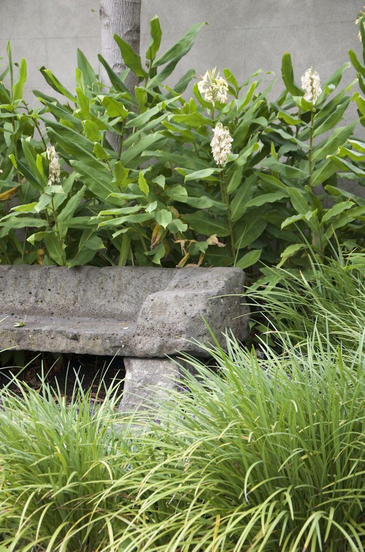 Jardín de estilo inglés contemporáneo 3