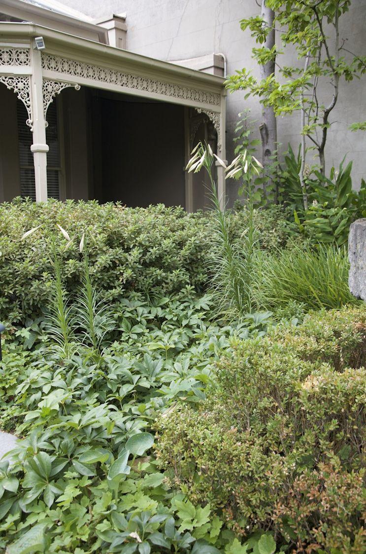 Jardín de estilo inglés contemporáneo 5