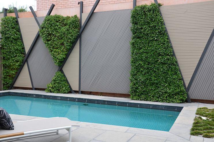 Diseño del jardín o patio trasero con pileta en estilo contemporáneo: jardín vertical