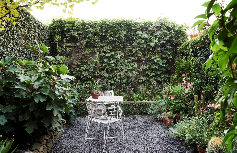 Dise o de jardines un jard n peque o y frondoso de 24 metros for Plantas jardin mediterraneo