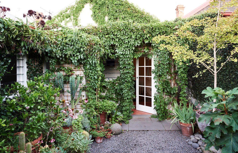 Dise o de jardines un jard n peque o y frondoso de 24 metros for Arboles para macetas de exterior