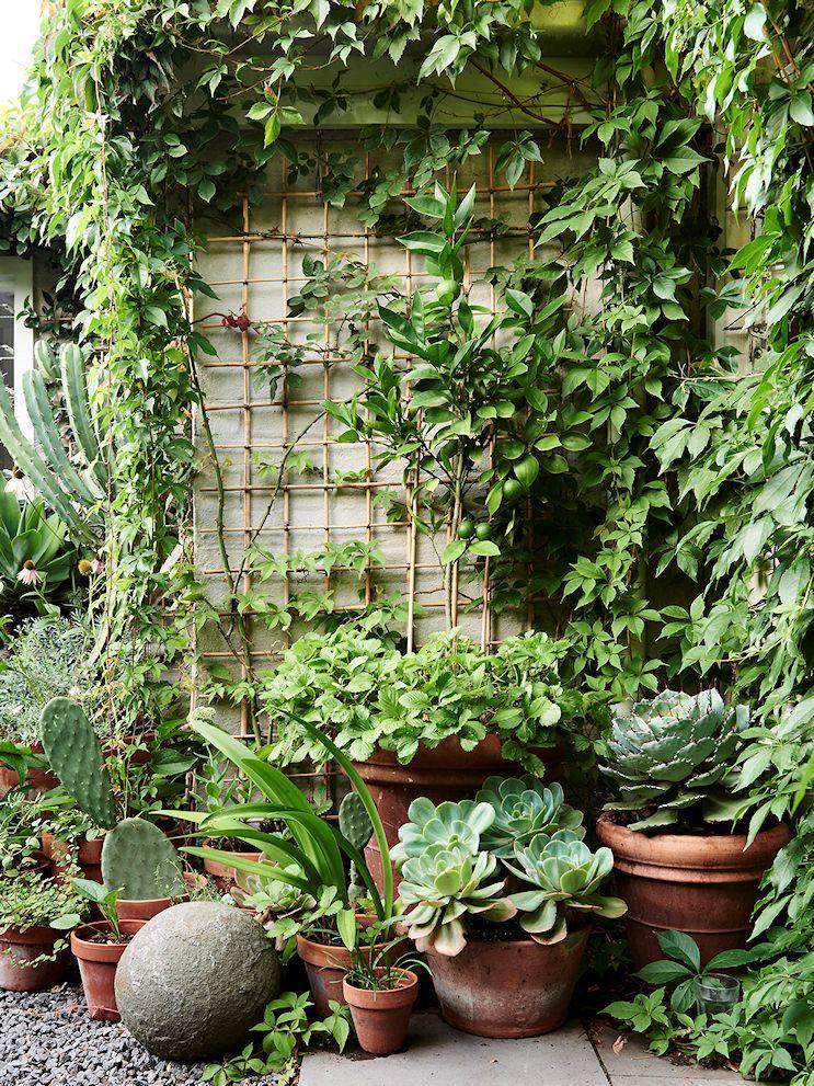 Diseño de jardines pequeños 4