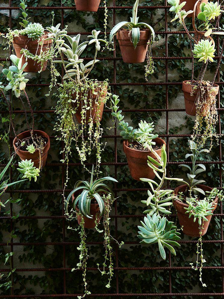 Diseño de jardines pequeños 6