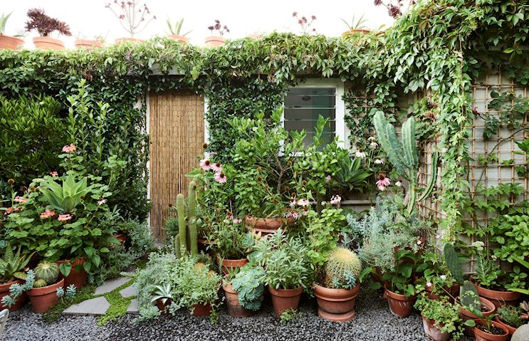Diseño de jardines pequeños 8