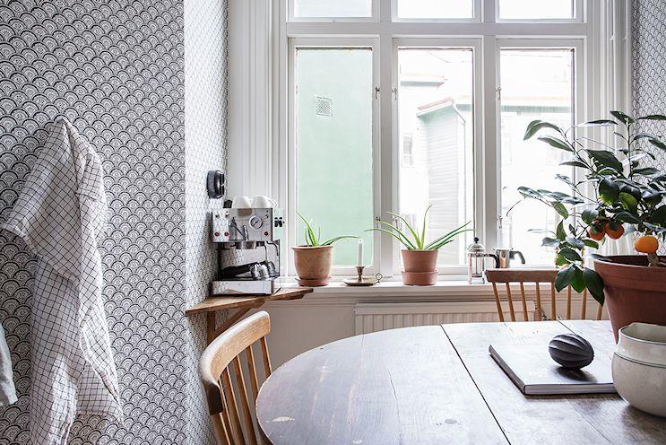 Plantas de interior complementan la decoración de la cocina-comedor