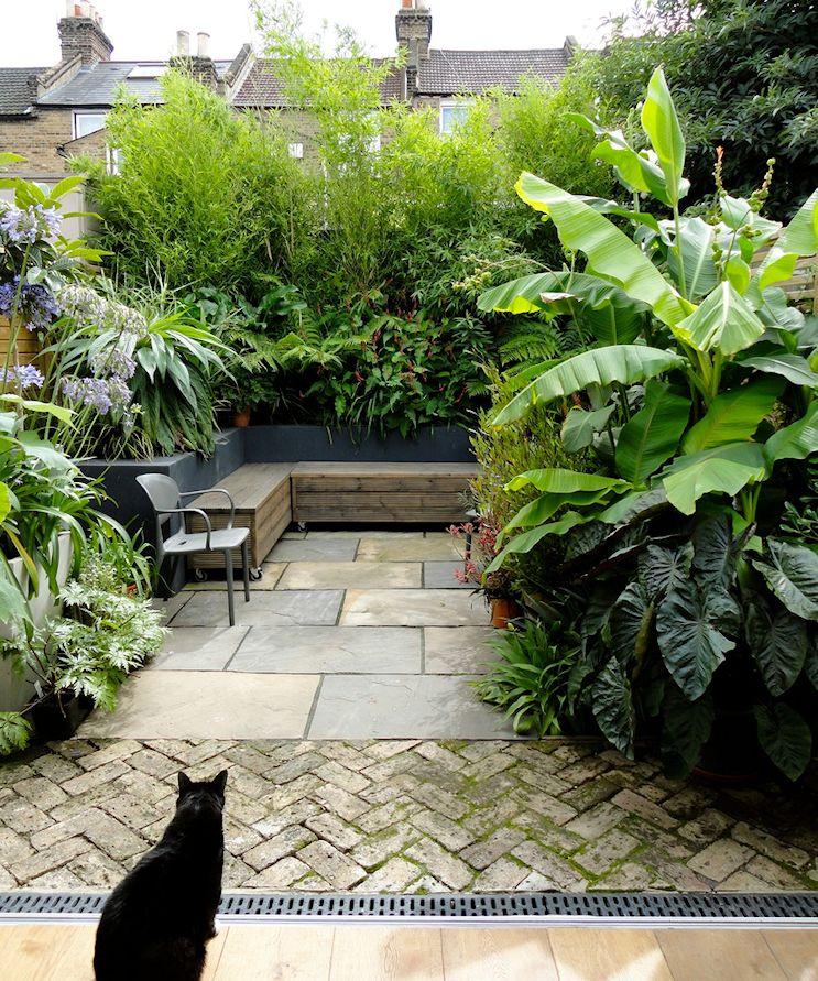 Patio pequeño de estilo tropical: plantas de follaje atractivo que combinan diferentes tonos de verde y texturas aportan el toque tropical al diseño