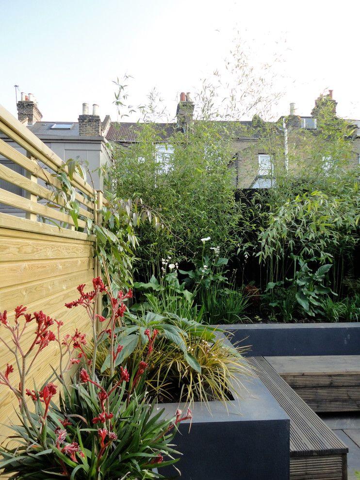 El patio en pleno proceso de transformación: una vez colocadas las plantas sólo queda esperar a que crezcan y se desarrollen