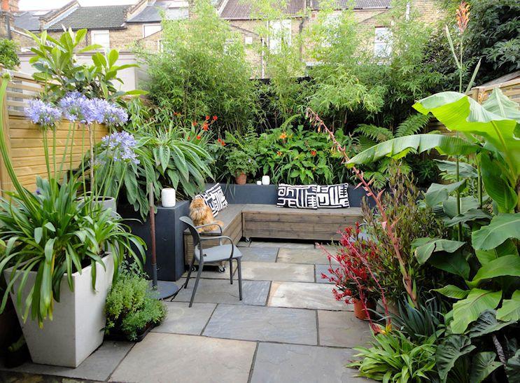 Plantas que se adaptan bien a climas templados fueron las utilizadas para lograr un estilo tropical en el diseño del patio