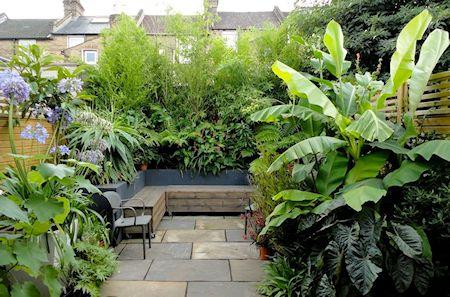 Patio pequeño de estilo tropical