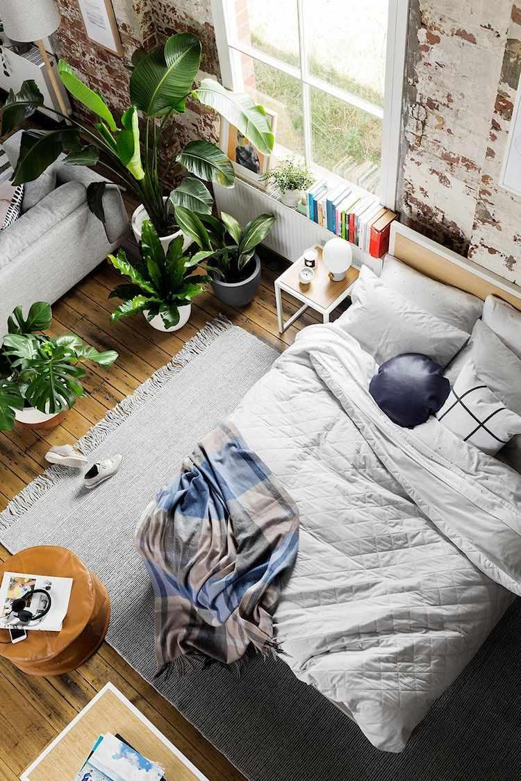 Loft de diseño en antiguo edificio industrial: el dormitorio se separa visualmente del living con diferentes plantas de estilo tropical en macetas.