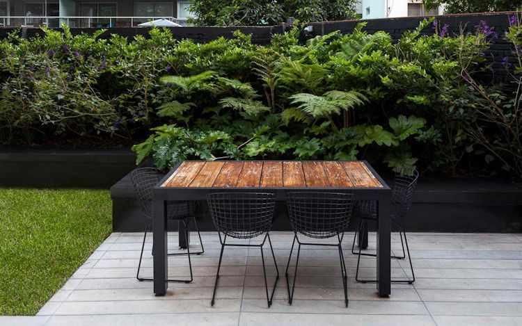 Jardín moderno con cantero elevado y plantas de hojas grandes y atractivas