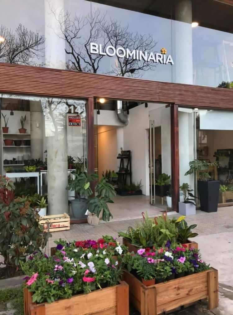 Bloominaria en Villa Urquiza: huertas urbanas, huertas verticales, macetas, maceteros 1