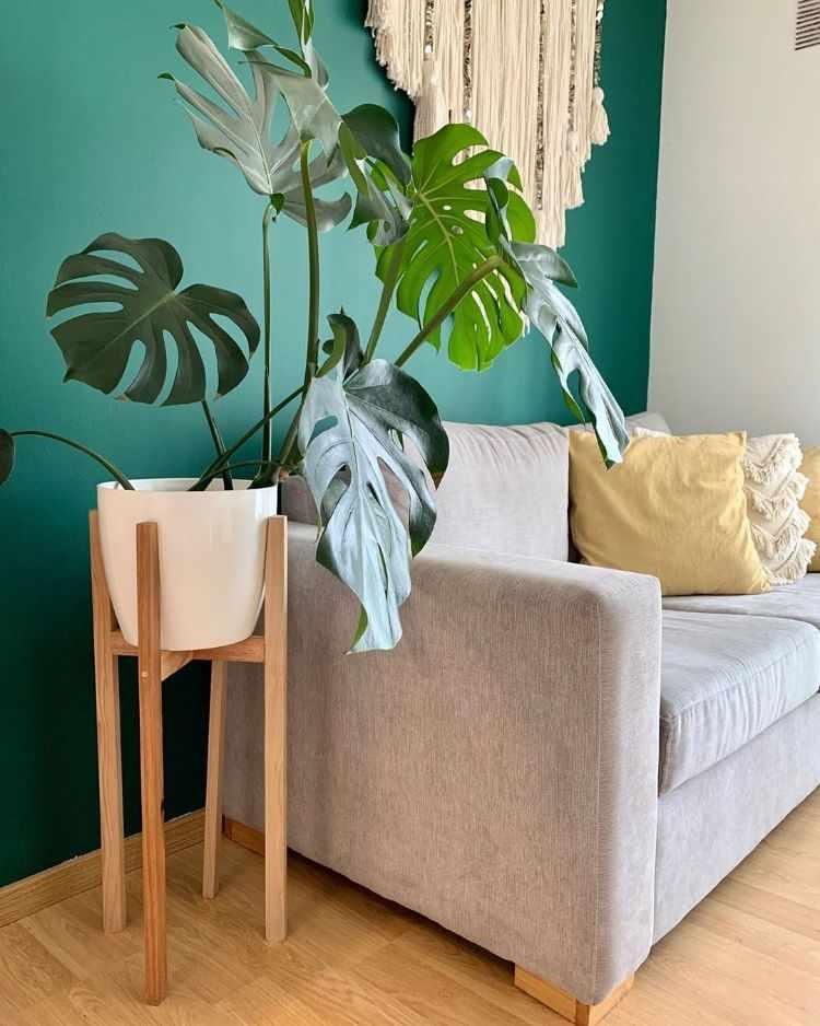 Hestia Home Deco - Muebles de diseño y decoración en Rosario, Santa Fe 3