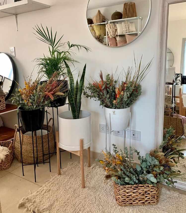 Hestia Home Deco - Muebles de diseño y decoración en Rosario, Santa Fe 4