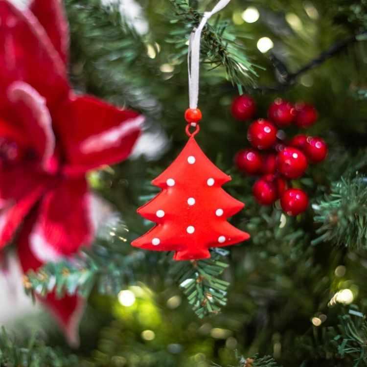 Alparamis - Local de decoración, bazar, textiles y decoración para fiestas y navidad en Olivos y Galerías Pacífico 10