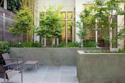 Canteros de cemento en jardin moderno