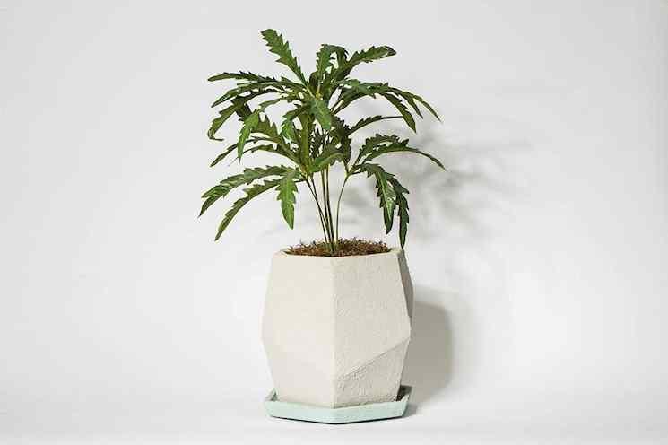 Bará - Diseño en Cemento 1
