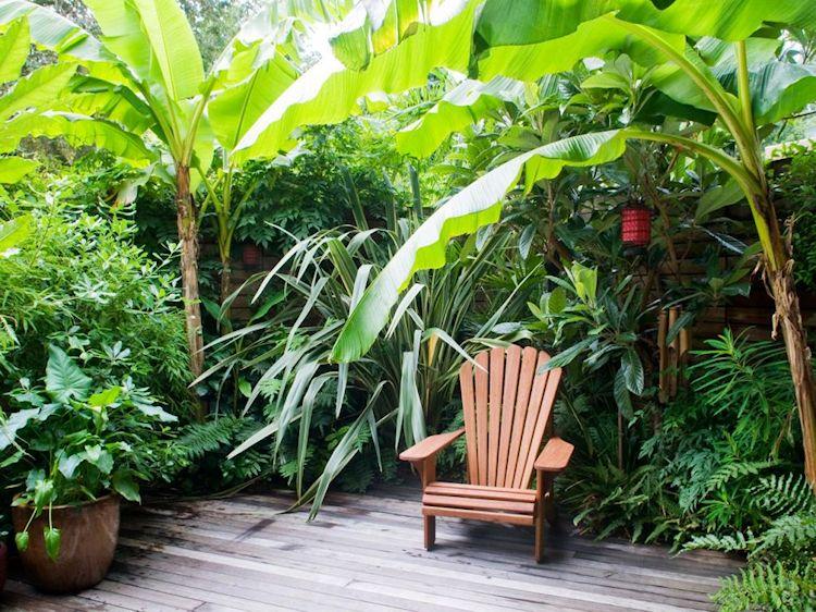 Diseño de jardines tropicales